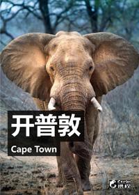 携程旅游微杂志-开普敦