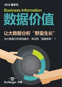"""《数据价值》2016隆冬刊:让大数据分析""""野蛮生长"""""""
