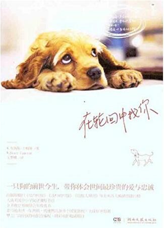 """在轮回中找你(《一条狗的使命》电影原著。比""""忠犬八公""""更催泪。)"""