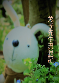 兔子先生流浪记