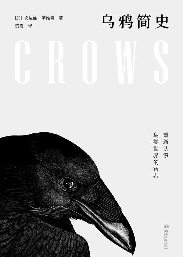 乌鸦简史:重新认识鸟类世界的智者