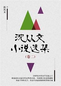 沈从文小说选集(卷二)