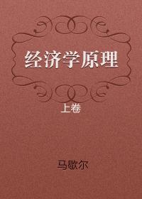 经济学原理 (上卷)