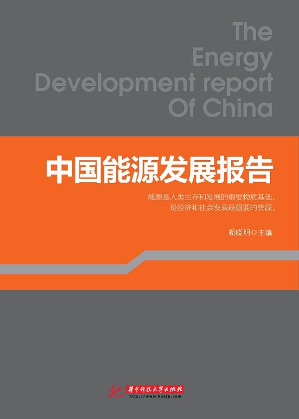 中国能源发展报告