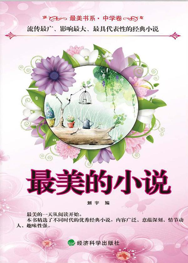 最美的小说(最美书系)