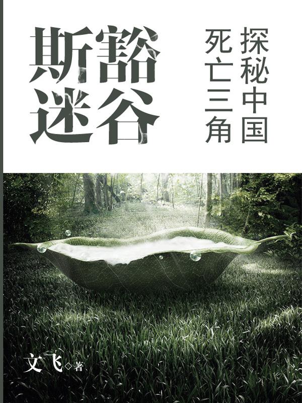 斯豁迷谷:探秘中国死亡三角