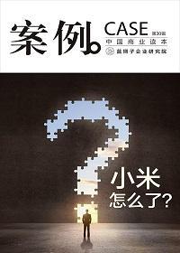 案例:小米怎么了(第30辑)